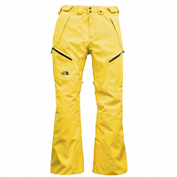 The North Face M CHAKAL PANT LEO YELLOW (VB6)