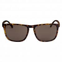 DC DC SHADES M MATTE TORTOISE/BROWN