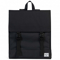 Herschel Survey BLACK